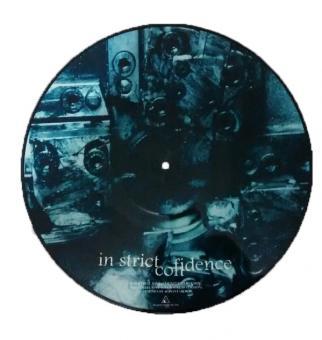 """INDUSTRIAL LOVE / TRUTHLIKE"" (12"" Picture Vinyl)"